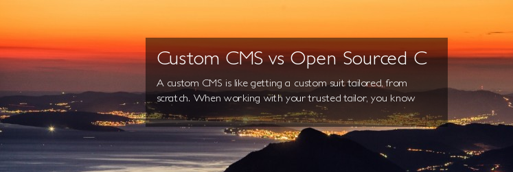 Custom CMS vs Open Sourced CMS