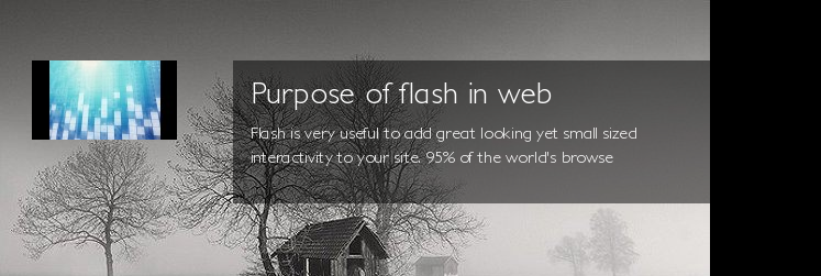Purpose of flash in web